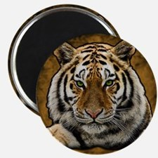 Cute Tiger Magnet