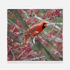 Cute Cardinal bird Queen Duvet