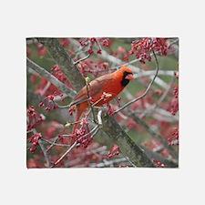 Cute Bird photos Throw Blanket