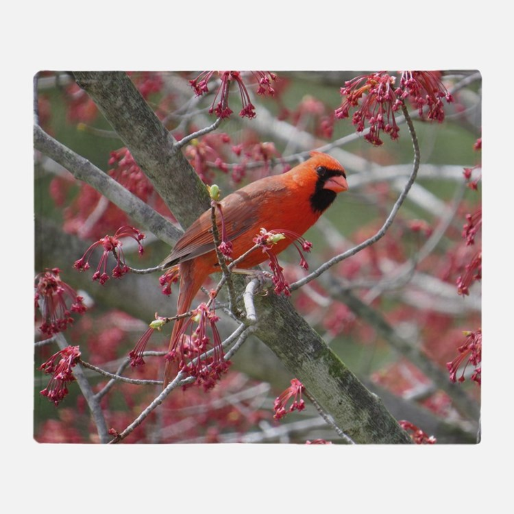 Cute A caged song bird in early spring Throw Blanket