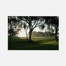 Torrey Pines Sunrise Rectangle Magnet
