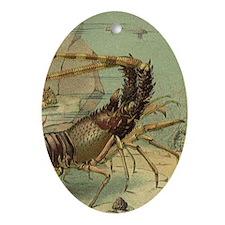 Vintage Marine Life, Shrimp Ornament (Oval)