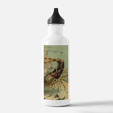 Vintage Marine Life, S Water Bottle
