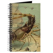 Vintage Marine Life, Shrimp Journal