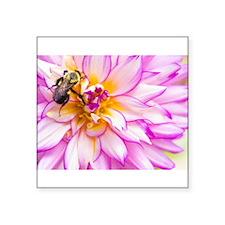 """""""Bee"""" Mine Dahlia Sticker"""
