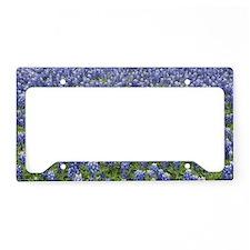 Bluebonnets License Plate Holder