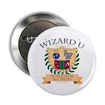 Wizard U Alchemy RPG Gamer HP Button