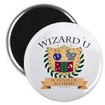 Wizard U Alchemy RPG Gamer HP Magnet