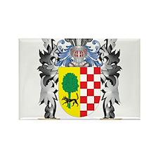 Alvarez Coat of Arms - Family Crest Magnets