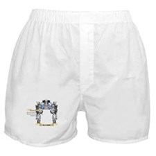 Alvaro Coat of Arms - Family Crest Boxer Shorts
