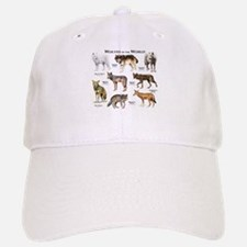 Wolves of the World Cap