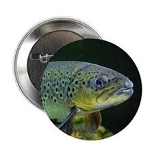 "BROWN TROUT 2.25"" Button"