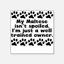 My Maltese Isnt Spoiled Sticker