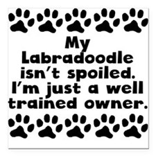 "My Labradoodle Isnt Spoiled Square Car Magnet 3"" x"