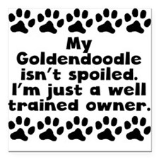 My Goldendoodle Isnt Spoiled Square Car Magnet 3""
