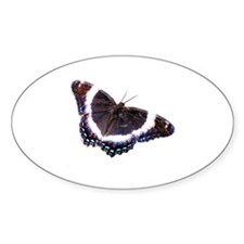 Black butterfly Decal