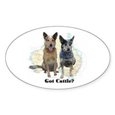 Got Cattle? Oval Decal