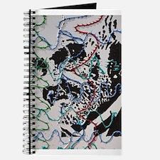 The Graffiti Man Journal
