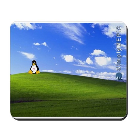 SimplyMEPIS Linux Mousepad