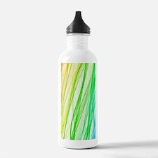 Abstract Art Water Bottle
