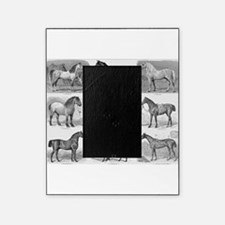 Horses Picture Frame
