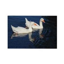 Two Emden Geese Magnets