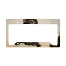 Cool Maine coon cat License Plate Holder