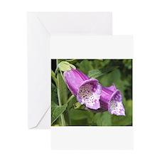 Purple Foxglove Greeting Cards