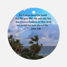 UPLIFTING JOHN 3:16 Ornament (Round)