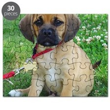 Puggle Puzzle