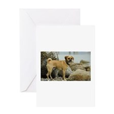 Puggle Greeting Cards