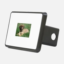 Puggle Hitch Cover