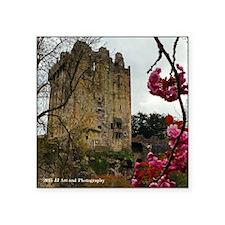 """Blarney Blossom Square Sticker 3"""" X 3"""""""