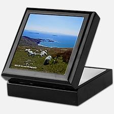 Ring Of Kerry Sheep Keepsake Box