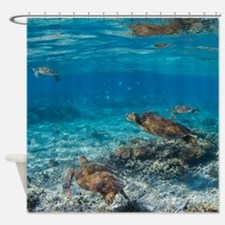 Turtle Party Shower Curtain