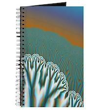 """""""Fractal Forest"""" Fractal Art Journal"""