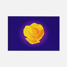 Yellow Poppy Magnets