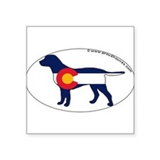 "Cute Colorado Square Sticker 3"" x 3"""