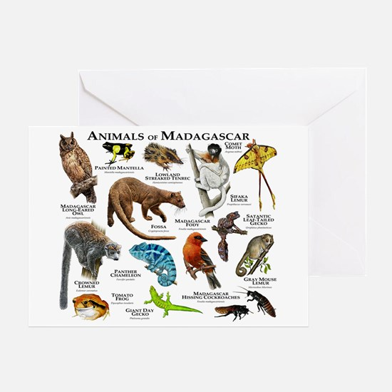 Animals of Madagascar Greeting Card
