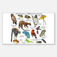 Animals of Madagascar Sticker (Rectangle)