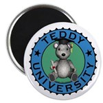 Teddy University Magnet