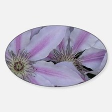 Purple Clematis Decal