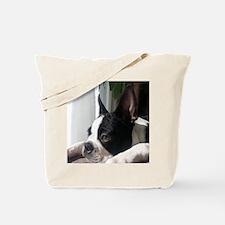 Thoughtful Boston Tote Bag