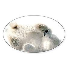 Baby Polar Bear Decal