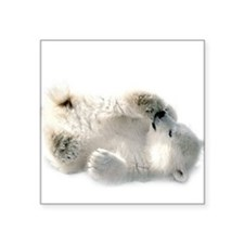 Baby Polar Bear Sticker