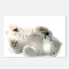 Baby Polar Bear Postcards (package Of 8)