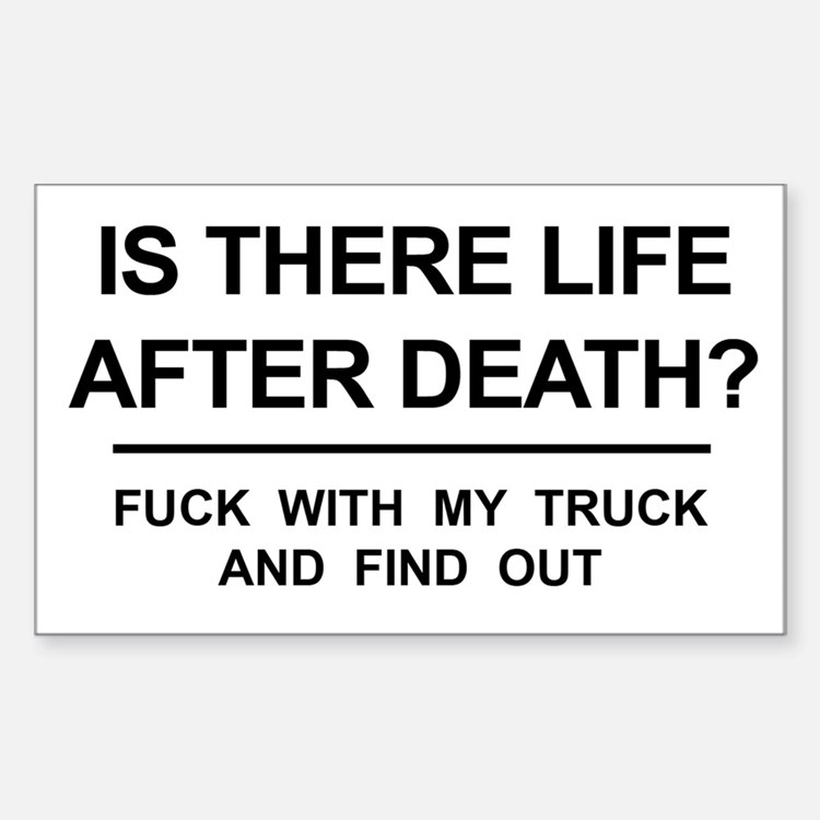Funny! Is there life after death? (MY TRUCK) Stick