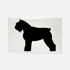 Bouvier des Flandres Dog Rectangle Magnet