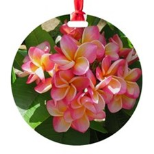 Hawaiian Plumeria Ornament