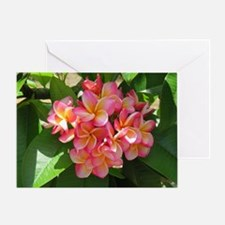 Hawaiian Plumeria Greeting Card